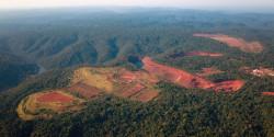 bresil-la-deforestation-de-l-amazonie-en-hausse-de-16